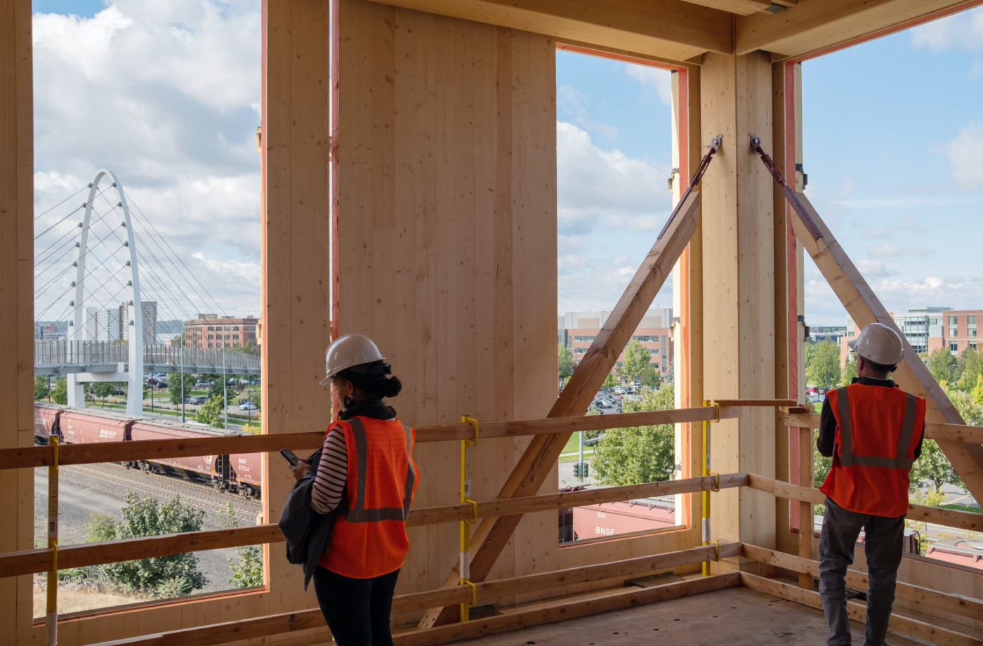 Google is investigating building cities out of structural timber